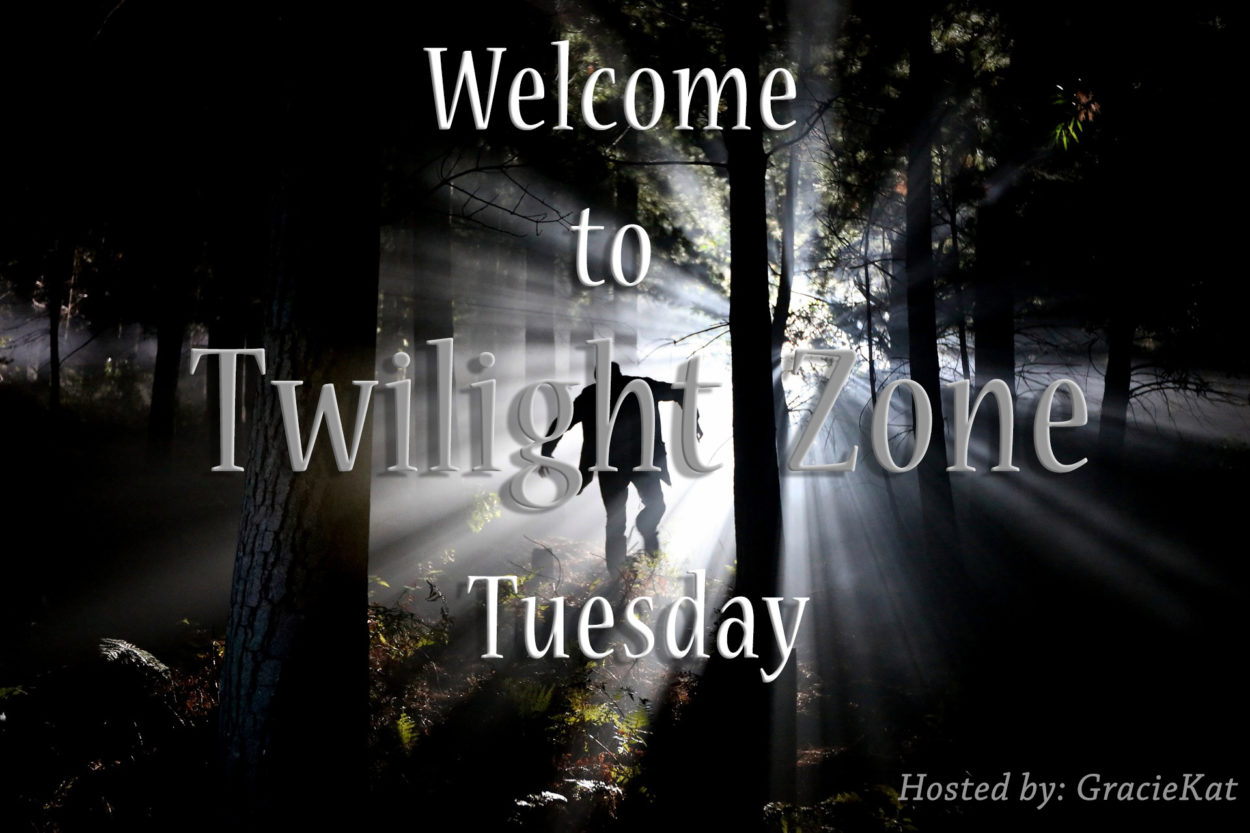 Twilight Zone Tuesday Shadow Play Sci Fi Scary