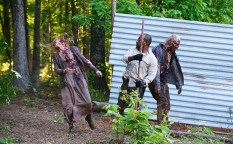 Walking Dead First Time Again_3