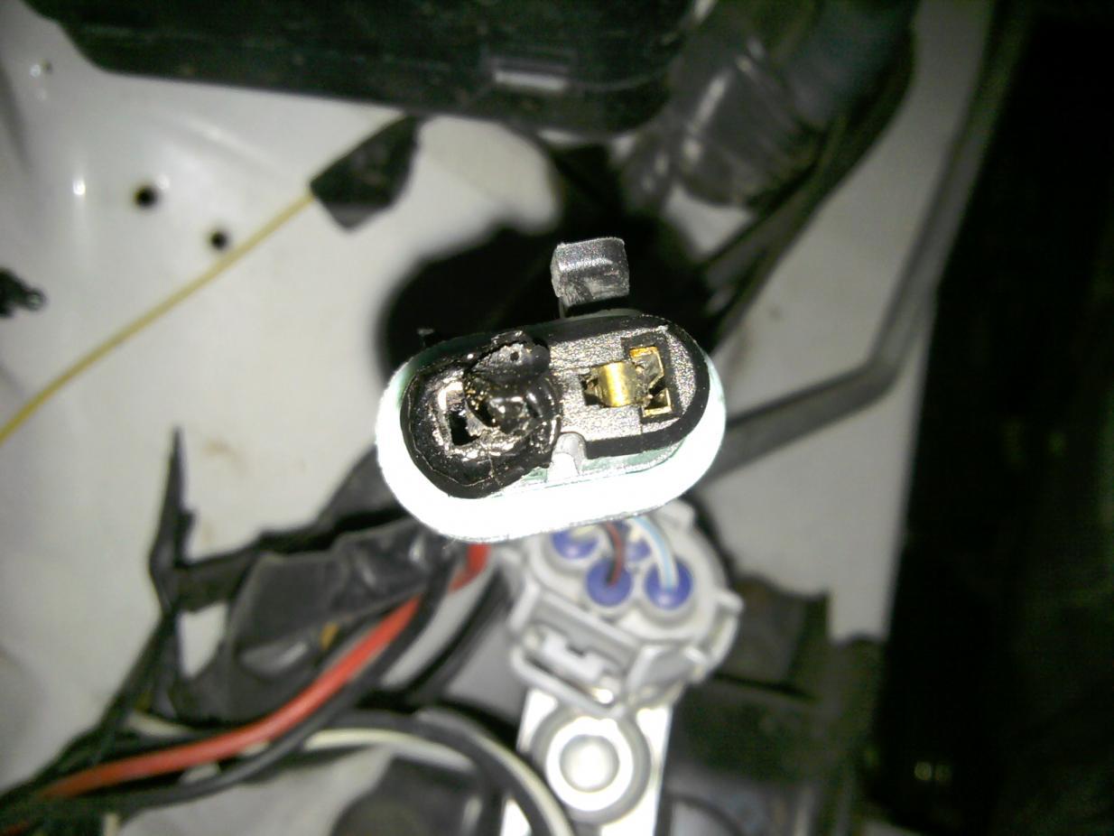 hight resolution of headlight sockets melting img 20111207 164541 jpg
