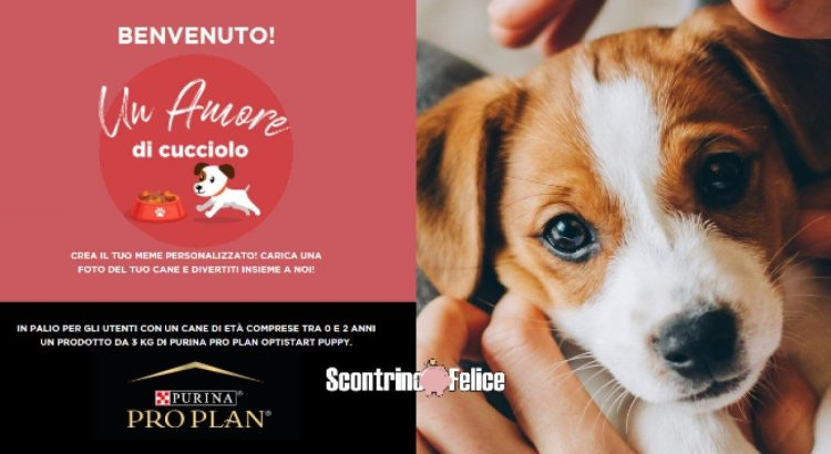 Un Amore di Cucciolo PetPassion TV Purina