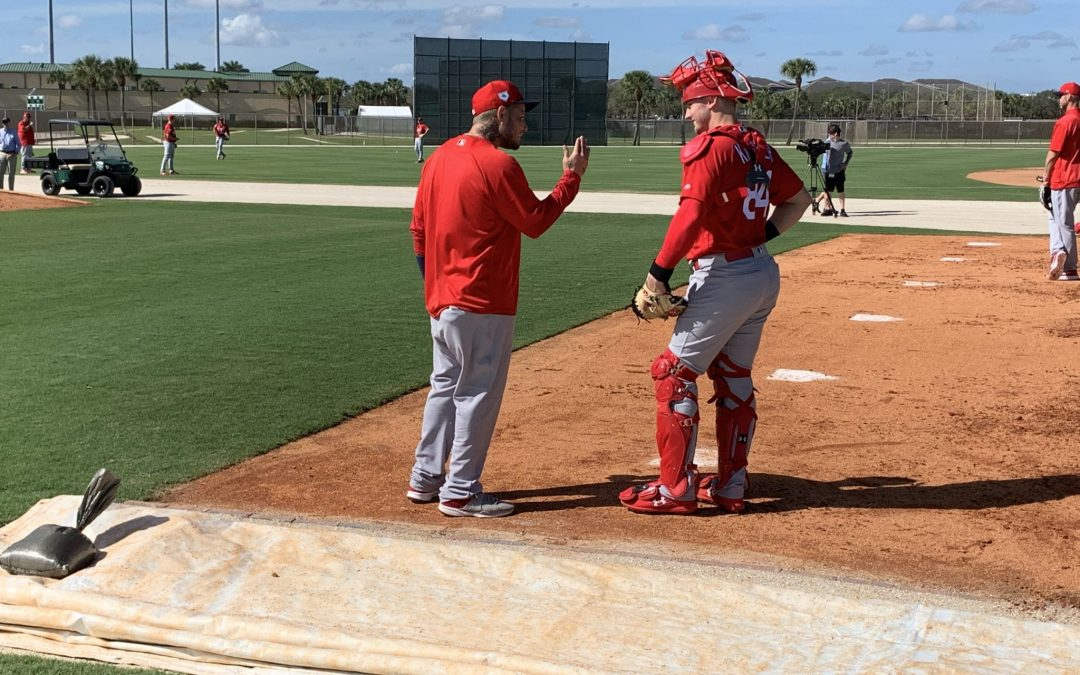 Cardinals catchers shoulder a heavy workload early in Spring Training