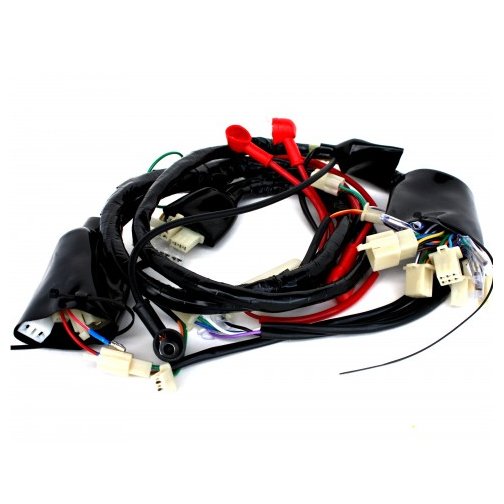 Wire Harness For 50cc 4 Stroke Lance Charming Bms Federal
