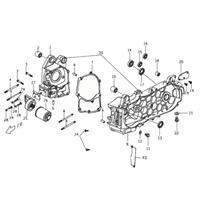 Crankcase Buddy 125