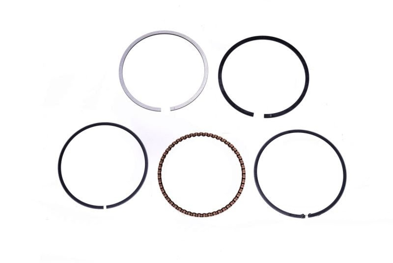 ring set, GY6 80cc ceramic cylinder , scooterpower.eu