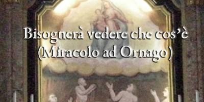 Bisognerà vedere che cos'è (Miracoli a Ornago) di Paolo Cazzaniga