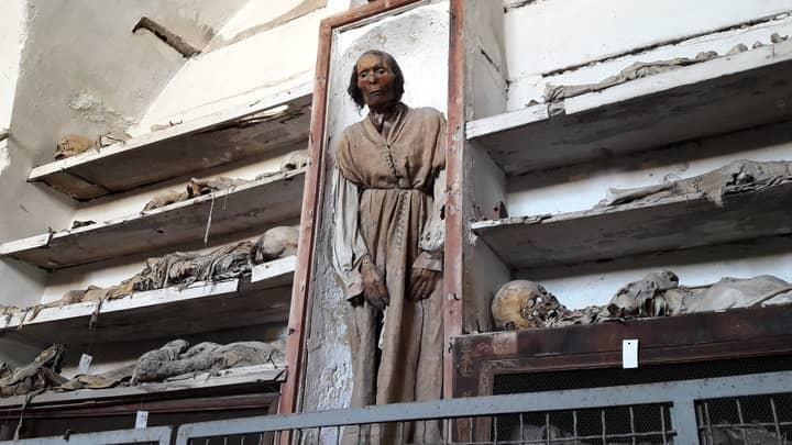 Le mummie delle catacombe di Palermo