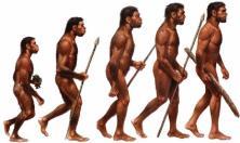 mostra Homo sapiens