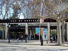 Zoo - Barcellona (Spagna)