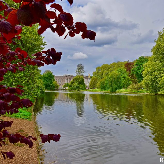 St. James Park - Londra, Inghilterra
