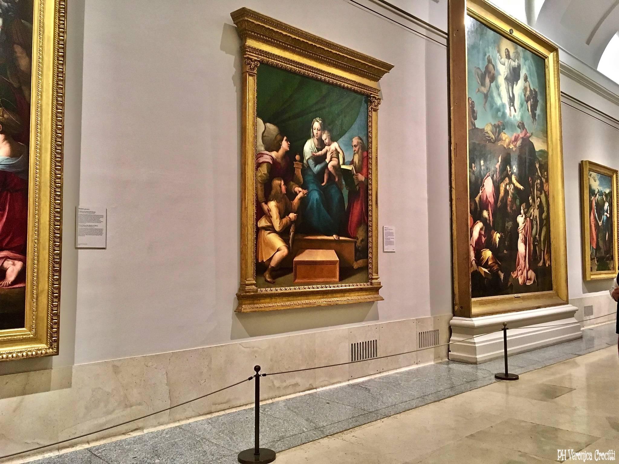 La Vergine del Pesce, Raffaello. Museo del Prado - Madrid, Spagna