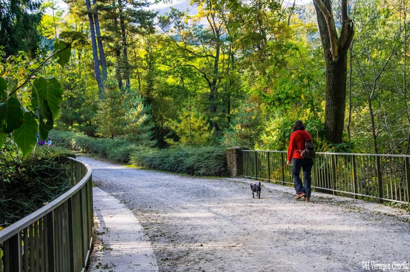 Parco della Burcina, Biella (Piemonte, Italia)