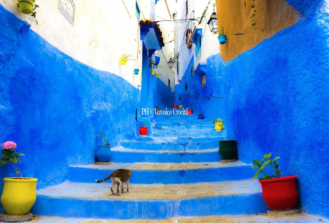 Chefchaouen, Marocco _13-1