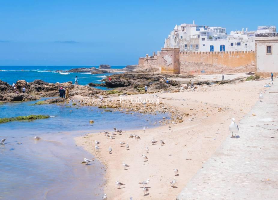 Essaouira - Marocco _6