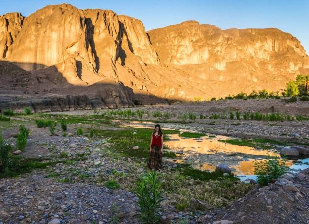 Fint Oasis, Oasi di Fint (Ouarzazate) - Marocco _2