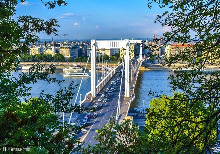 Ponte Elizabeth - Ponte Elizabeth - Budapest, Ungheria (Europa)