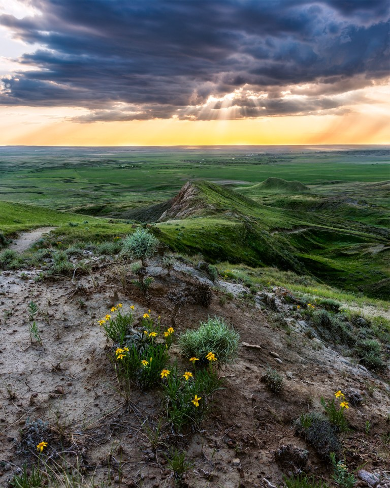 Light hits the valley floor. The eye is led by different lines in landscape of Grasslands National Park