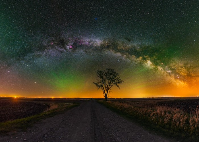 A landscape astrophotograph panorama of the night sky in Saskatchewan over a lone tree as part of a night photography workshop