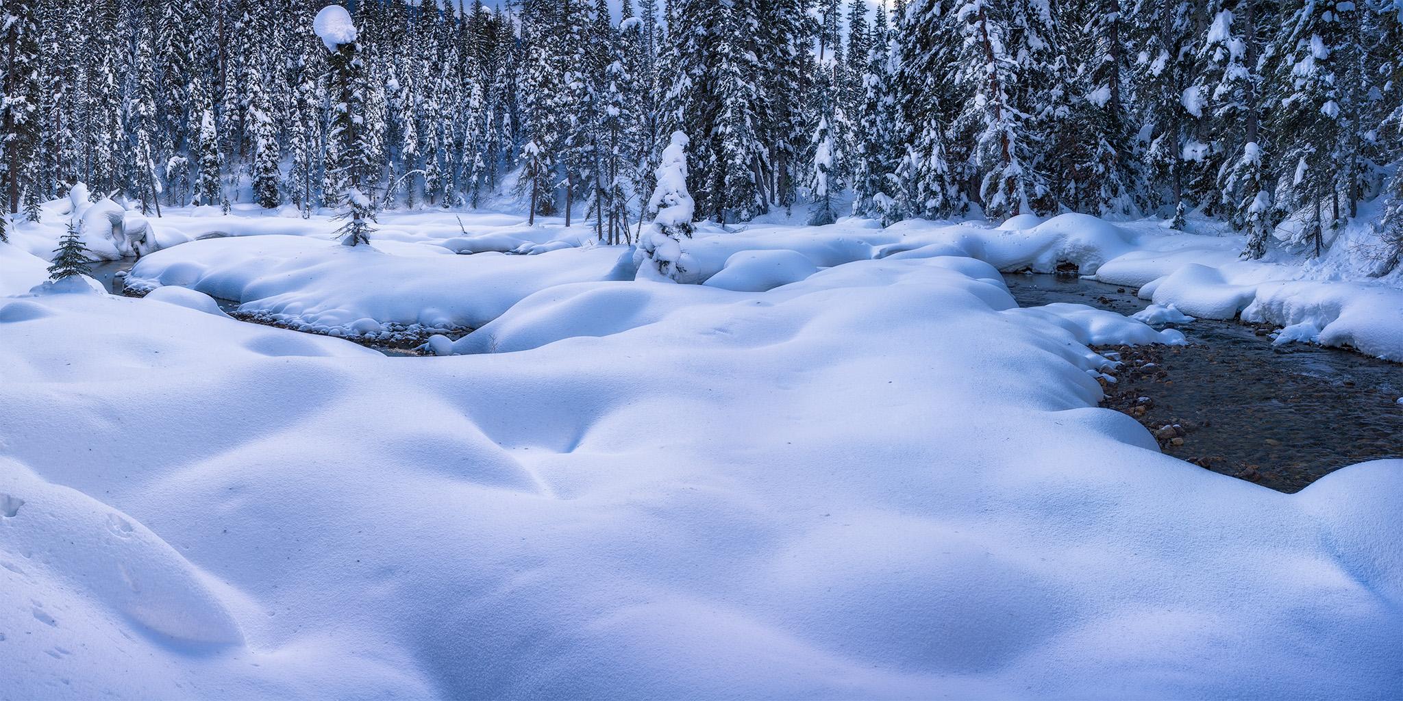 Landscape Photography near Emerald Lake. A frozen creek winds around snow pillows