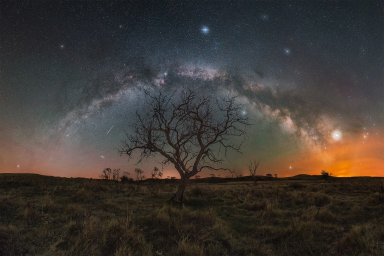 The milky way core arches in a full panorama over a lone tree in Saskatchewan