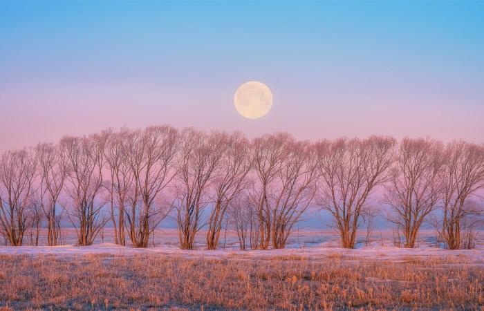 Night Photography over the Saskatchewan prairie. A full moon sets in Venus' Belt