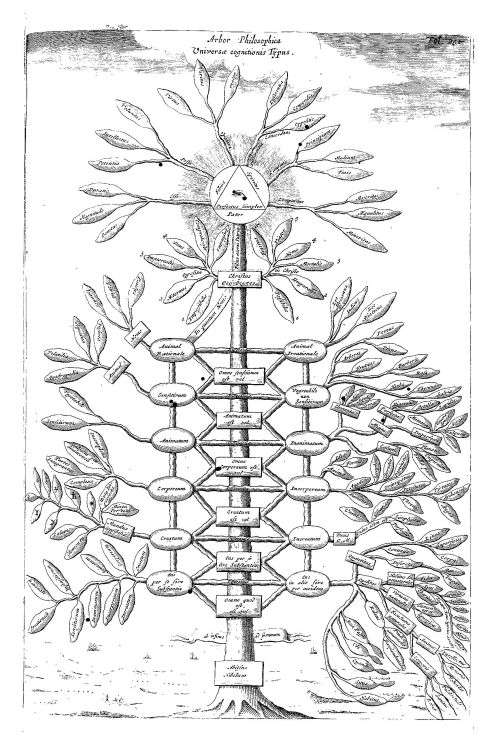 small resolution of kircher s philosophical tree representing all branches of knowledge from ars magna sciendi 1669