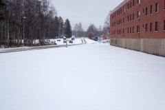 Snow on the lawn near our building. Perty.