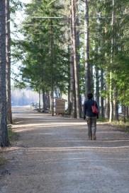 My wife, Amanda, strolling to the lake (Nydalasjön).