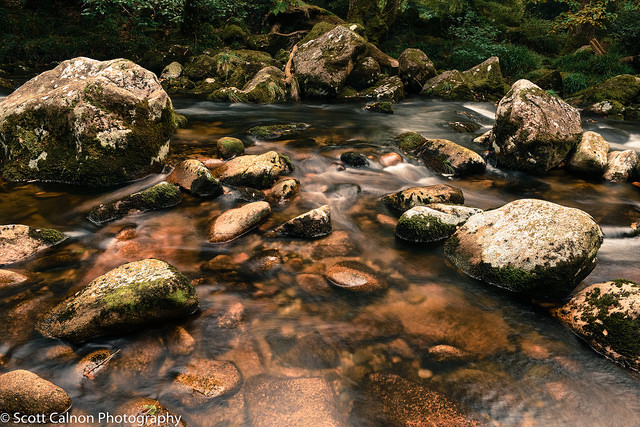 New-Autumnal-Shaugh-Prior-landscape-water-1
