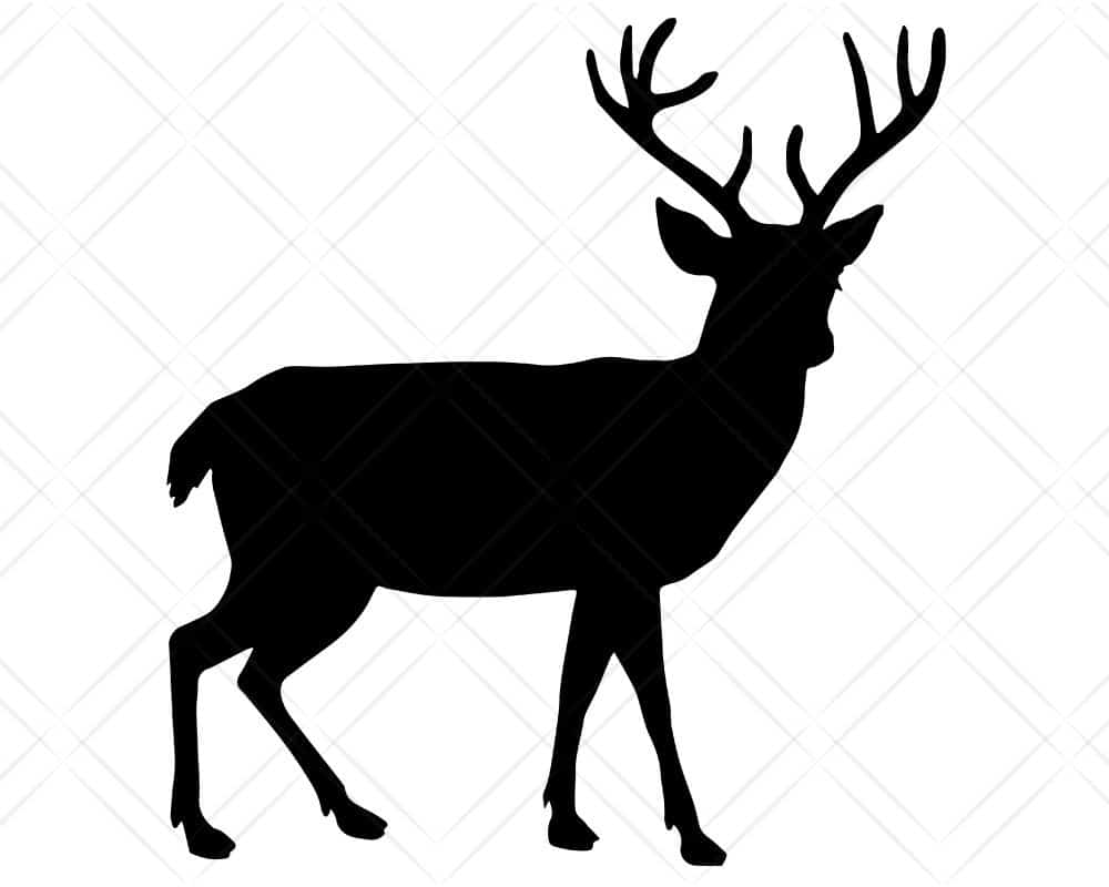Download Deer SVG Cut Files | Scotties Designs
