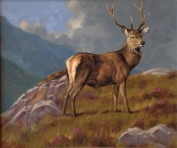 Animal Print Wallpaper Uk Original Oil Painting Quot The Lone Stag Quot By Peter Munro
