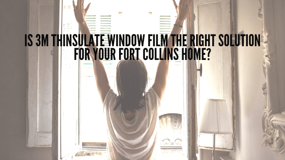 Is 3M Thinsulate Window Film the Right Solution for Your Fort Collins Home?