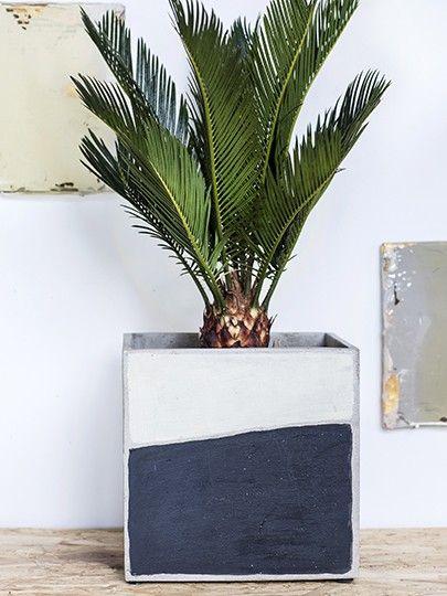 Vasi per piante da interno di design: Marie Arty Vaso Quadrato Vasi In Cemento Da Esterno O Da Interno Serax