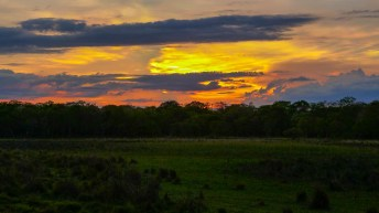 Sunset on the Pantanal