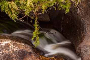 Small rapids on Bald Rock Creek