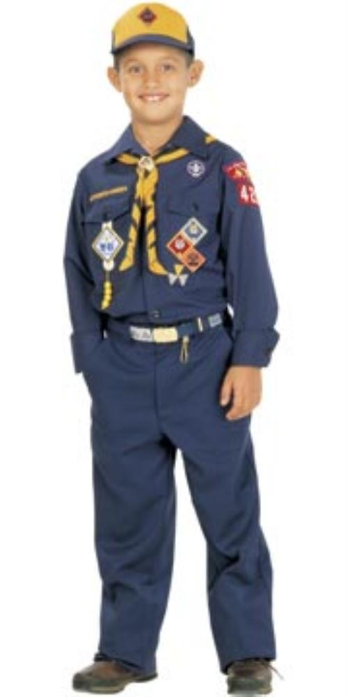 Official Cub Scout Pins Placement