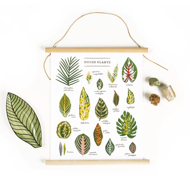 CanvasBanner_Houseplants_Style_Web