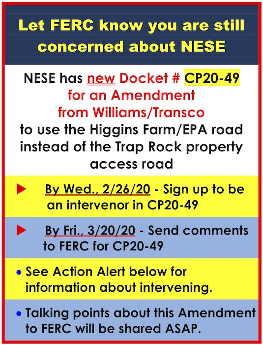 image with a header that says 'LET FERC KNOW ARE STILL CONCERNED ABOUT NESE'