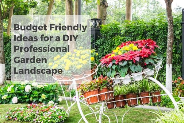 budget friendly ideas diy