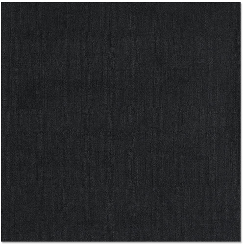 Bazzill Basics 12 X 12 Cardstock Canvas Bling Texture