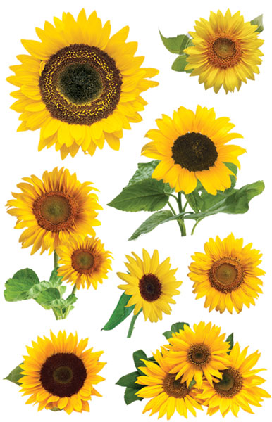 Paper House Gardening Sunflowers 3D Stickers