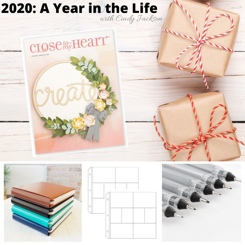 2020 - A Year in the Life
