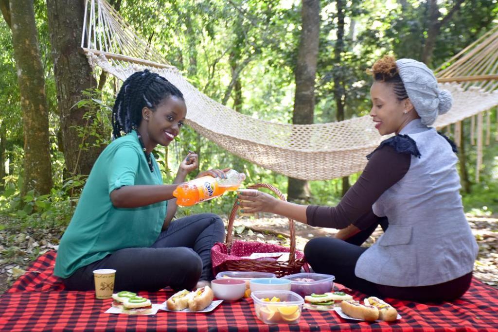 picnic_nairobi_forest