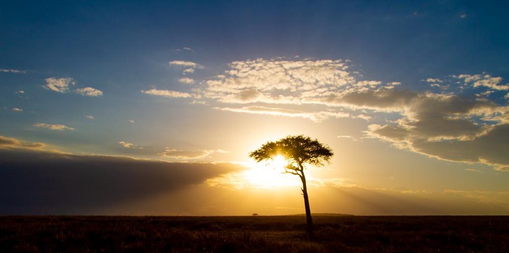Traveling_Solo_In_Kenya