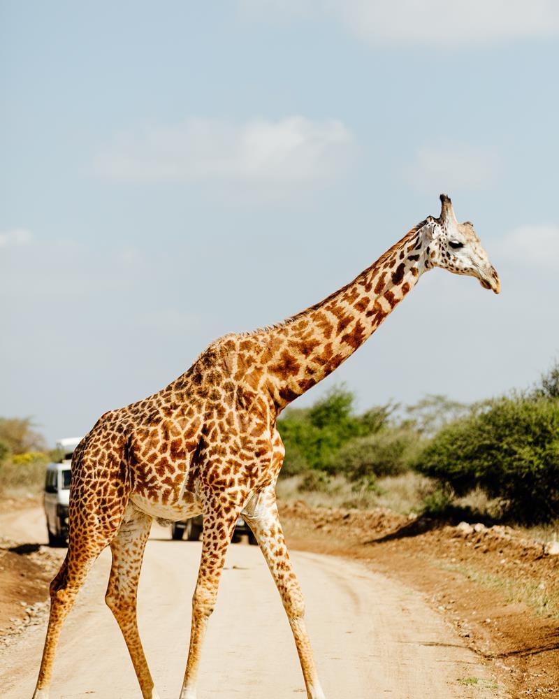 Nairobi_bucketlist