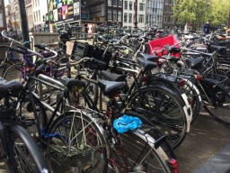 Amsterdam 2017-8