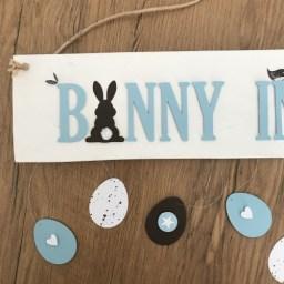 Bunny in...3