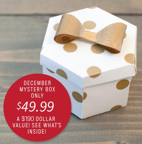 Cricut Mystery Box For December