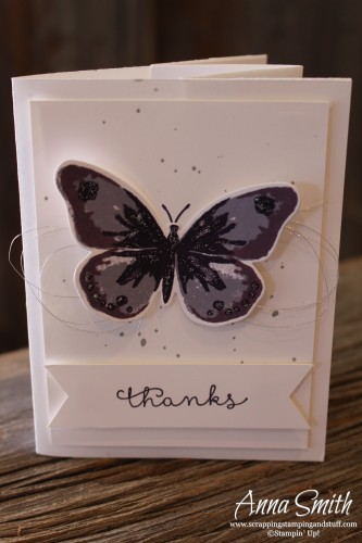 Watercolor Wings Thank You Tunnel Card