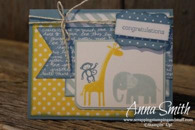 Zoo Baby Blues baby boy card