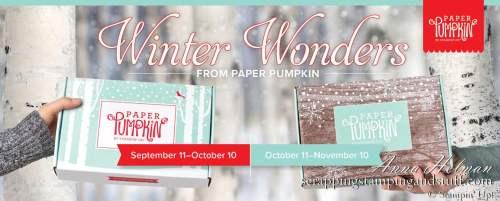 Stampin Up Paper Pumpkin Craft Subscription Box Kit